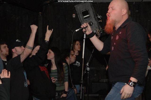 [green carnation on Feb 26, 2006 at Cabot st. (Chicopee, Ma)]